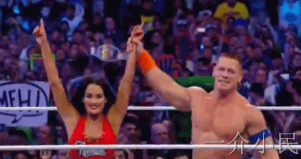 WWE Wrestlemania 33摔角狂热33 哈迪兄弟加入WWE,送葬者退役【附视频】